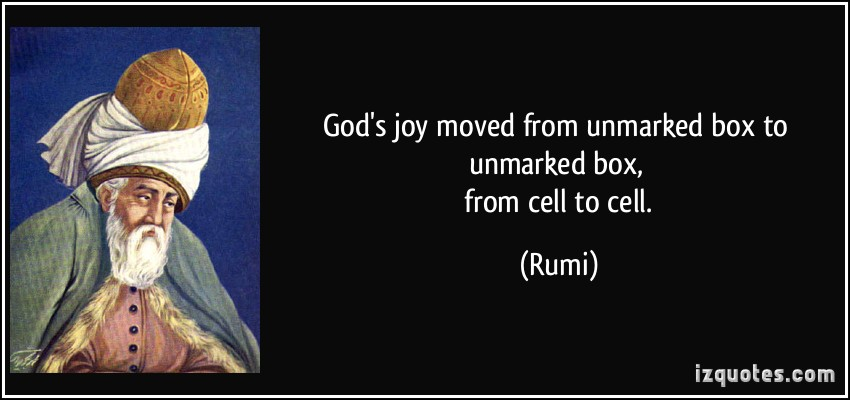 quote-god-s-joy-moved-from-unmarked-box-to-unmarked-box-from-cell-to-cell-rumi-263384