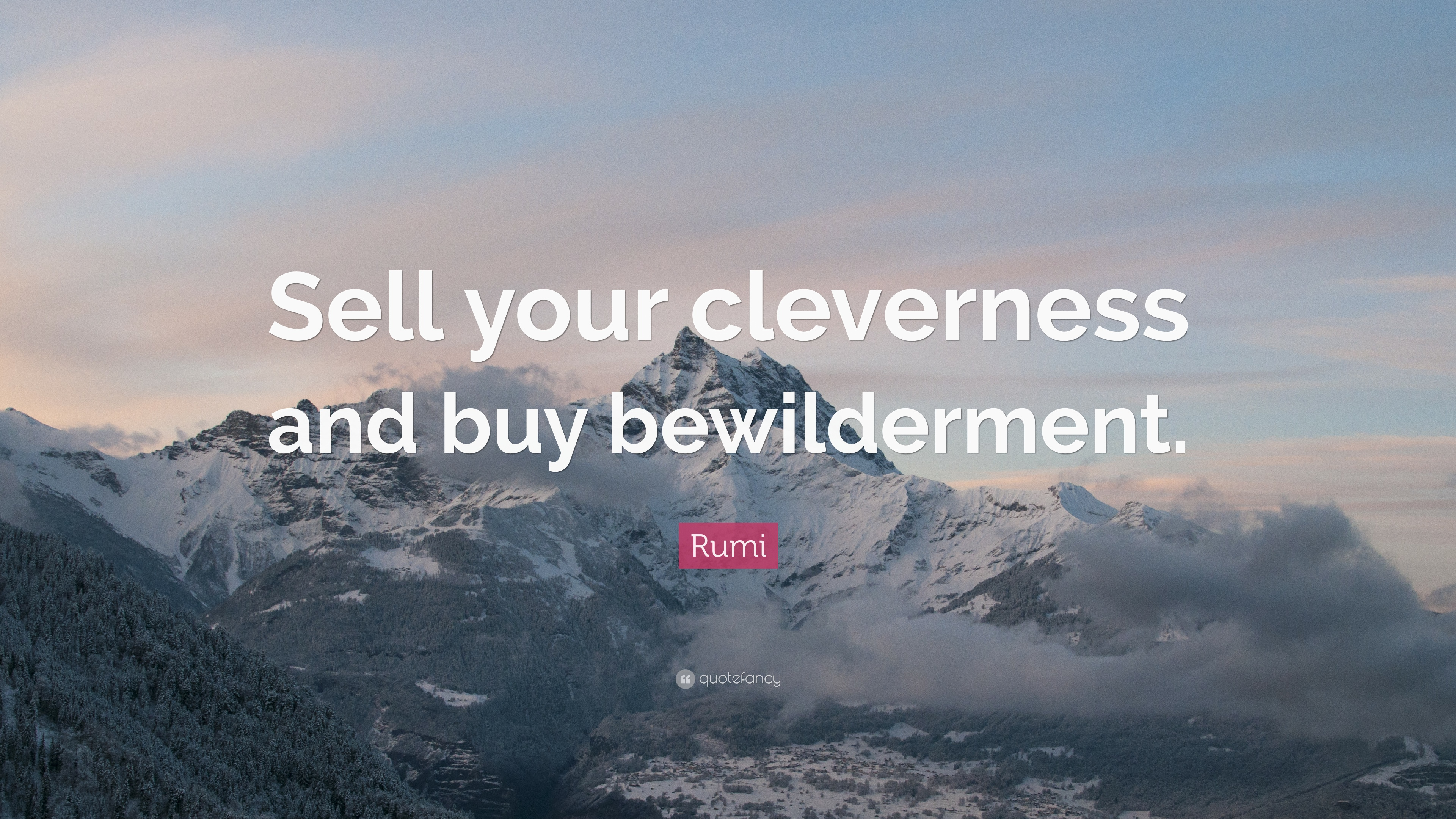 sell your biwilderment